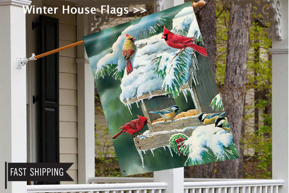 winter-outdoor-yard-flags.jpg
